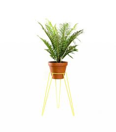 The Best Plant Stands on the Market via @domainehome