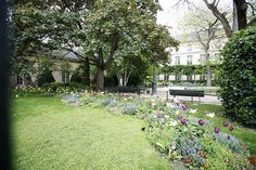 Square Georges Cain Sidewalk, Plants, Side Walkway, Walkway, Plant, Walkways, Planets, Pavement