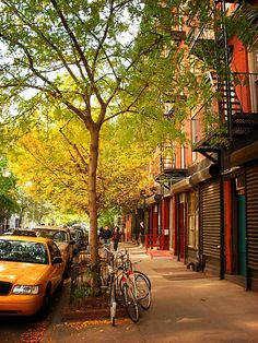 NYC in the Fall...5 more days till I see this in real life