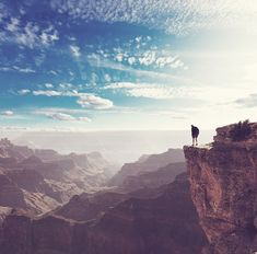 #Shutterstock's 15 Most #Viral Images of 2015 - #Photography #Photos #Imagery #Social - grand canyon hiker stock photo