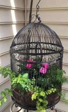 Hanging Bird Cage, Large Bird Cages, Garden Trellis, Balcony Garden, Birdcage Planter, Birdcage Decor, Bronze Spray Paint, Outdoor Kitchen Patio, Yard Sale Finds