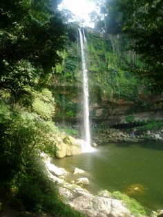 Cascada de Misol- Ha, Chiapas, Mexico - Google Search