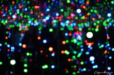 Blog post about Yayoi Kusama exhibit (ends in January)