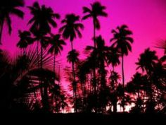 I'm so going to Hawaii someday :)