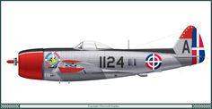 Kuvahaun tulos haulle dominican airforce