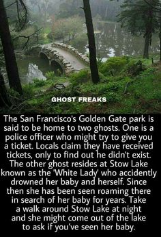 Golden Gate Park home to 2 ghosts! Scary Horror Stories, Short Creepy Stories, Spooky Stories, Ghost Stories, Paranormal Stories True, Haunting Stories, Bizarre Stories, Paranormal Photos, Creepy Horror