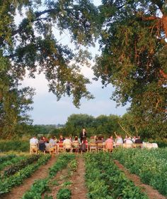 Farm to Table Gatherings - LOVE