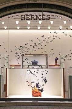 Birds flying in the Hermès store