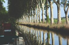 Spring Fever on the Canal du Midi Barge Saraphina Le Canal Du Midi, Spring Fever, 12th Century, Tour Guide, Luxury Travel, Cruise, How To Memorize Things, Country Roads, Nature