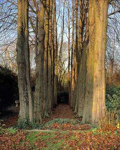 The Gibberd Garden Trust -- Essex