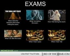 this is actually what i feel when i do an exams - - Lord of the RIngs Memes and Funny Pics - Lord of the Meme