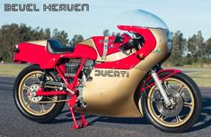 For sale: click the link to read more. Bikes For Sale, Ducati Monster, Racing, Link, Running, Auto Racing