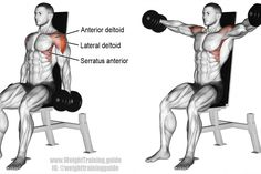 An isolation pull exercise. Main muscles worked: Lateral Deltoid, Anterior Deltoid, Serratus Anterior, Supraspinatus, and Middle and Lower Trapezii. Body Fitness, Mens Fitness, Fitness Tips, Fitness Motivation, Weight Training, Weight Lifting, Weight Loss, Best Shoulder Workout, Shoulder Exercises