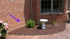 Instead of Planting Flowers, These Homeowners Did Something Brilliant