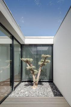 Descubra fotos de Jardins minimalistas: Casa em Gandra – Raulino Silva Arquitecto. Encontre em fotos as melhores ideias e inspirações para criar a sua casa perfeita.