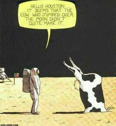 Jokes > Cartoons > Cow over the Moon Cartoon Jokes, Funny Cartoons, Funny Comics, Funny Jokes, Stupid Jokes, Stupid Funny, Farm Jokes, Farm Humor, Funny Cow Pictures
