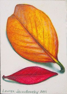 "ACEO Original Colored Pencil Drawing - ""Fall Leaves VI"" by L. Jacoubowsky 