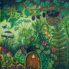 Enchanted Forest Book, Enchanted Forest Coloring Book, Magical Jungle Johanna Basford, Johanna Basford Secret Garden, Secret Garden Colouring, Johanna Basford Coloring Book, Coloring Pages Inspirational, Colored Pencil Techniques, Mushroom Art