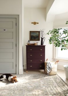 Eggplant Chalk Paint Dresser Makeover for The Drew Barrymore Show!