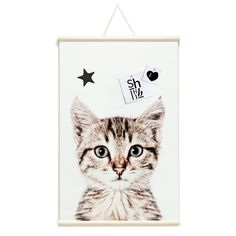 Magnetische poster - ready to roll - poes van Groovy Magnets