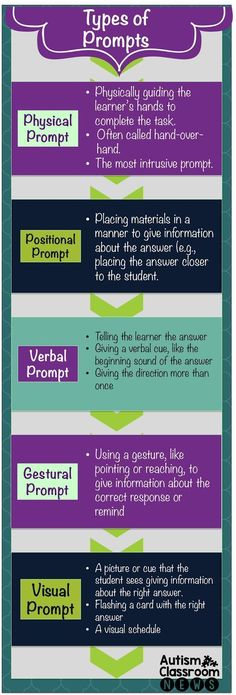 Autism Classroom News5 Main Types of Prompts: An Infographic
