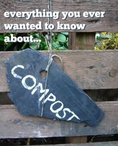 Compost 101 - Everything You Ever Wanted to Know