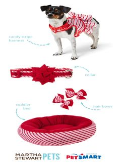 Find everything your pet needs to ring in the season from #MarthaStewartPets, only at PetSmart.