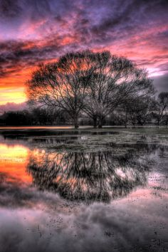 Rose sky reflected by Keith Britton