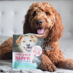 Any time Dublyn gets a treat, she is #myhappydog. Thank you to @lookwhoshappy for sharing these all natural treats with us. Natural treats work better on Dublyn's sensitive stomach so we definitely approve!