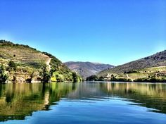 Boat cruise along the Douro Valley #Portugal