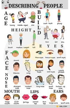 Describing People in English | 40+ Adjectives for Describing Physical Appearance - 7 E S L