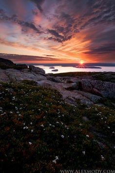 Sunrise on Cadillac Mountain, Acadia National Park, Maine