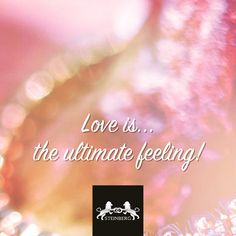 Daily #lovequote #123gold #trouwringen #steinberg #love #quote #sharethelove #qotd #feelings