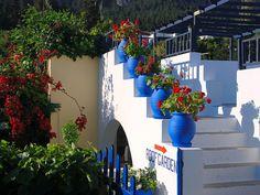 Roof top garden in Kos, Greece - love the colors!