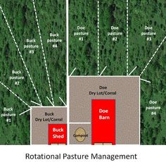 Example Of Rotational pastures & setup for strip grazing goats from one common area dry-lot.
