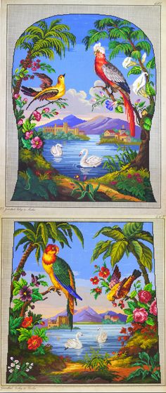 Amazingly vivid colours and tropical scenes!