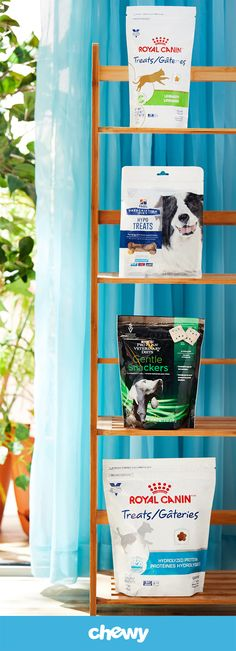 From allergies to GI sensitivies, there's a treat out there for your pup. Check out some of these vet-approved dog treats!
