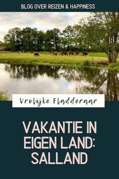 Salland is iets minder bekend dan Twente, maar ook een hele leuke regio voor je vakantie in provincie Overijssel. Wandelen, fietsen, hanzesteden… genoeg te doen! Wij vierden glamping vakantie in eigen land bij @molke Places, Travel, Europe, Viajes, Destinations, Traveling, Trips, Lugares