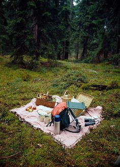 A bird watching picnic. How did someone capture one of my favorite ways to relax in one awesome photo?