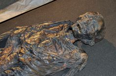 Haraldskær Woman is a preserved bog body from 490 BC, which got discovered by farmers of Jutland in 1835 and believed to be the remains of Queen Gunhild of Norway. Due to this mistaken identity, the body managed to survive until this day and is kept in a sarcophagus in St.Nicolas church, Vejle, Denmark.