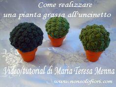 Pianta grassa all'uncinetto Succulent plant - Video/tutorial - www.nonsolofiori.com