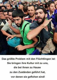 Das größte Problem mit den Flüchtlingen ist: Sie bringen ihre Kultur mit zu uns, die bei ihnen zu Hause zu den Zuständen geführt hat, vor denen sie geflohen sind!