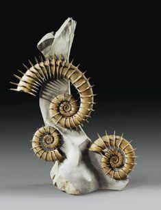 Ammonite Crioceras nolani, Bas crétacé (environ 133 millions d'années), Peyroules, sud de la France   Lot   Sotheby's