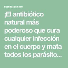 ¡El antibiótico natural más poderoso que cura cualquier infección en el cuerpo y mata todos los parásitos! - Buen Dia Salud