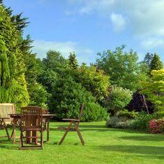 Fresh teak garden furniture homebase on this favorite site Teak Garden Furniture, Outdoor Furniture Sets, Teak Wood, Auckland, Golf Courses, Remove Paint, Restoration, Hardwood, Tropical