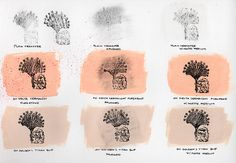More transparency film rub on experiments from Art Alchemist. Laser printed transparency technology is attaching the ink more firmly to the film nowadays; it is extremely difficult to remove the ink without smearing. Rub On Transfers, Watercolor Pencils, Alchemist, Art Lessons, Printed, Paintings, Ink, Technology, Inspiration
