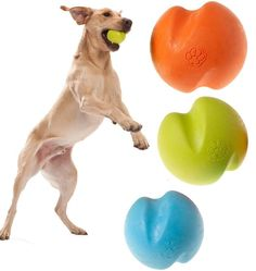 16 Heavy-Duty Dog Toys For Monster Chewers