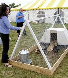 Fairgoers Flock to See Chicken Tractors we have one of these and use it all summer long, it serves as a nursery for young chickens, a hospital for sick chickens and even a place for our bunny to spend nice days Mobile Chicken Coop, Small Chicken Coops, Easy Chicken Coop, Chicken Cages, Portable Chicken Coop, Chicken Pen, Backyard Chicken Coops, Chickens Backyard, Clean Chicken