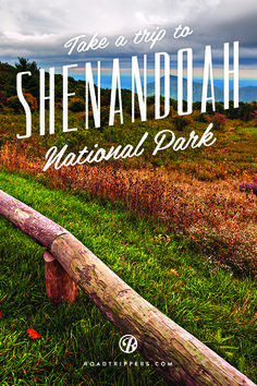 Take a trip through Virginia's breathtaking Shenandoah Valley National Park with this road trip adventure!