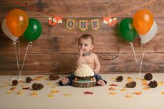 cake smash, cake smash session, woodland cake smash, first birthday, milestone session